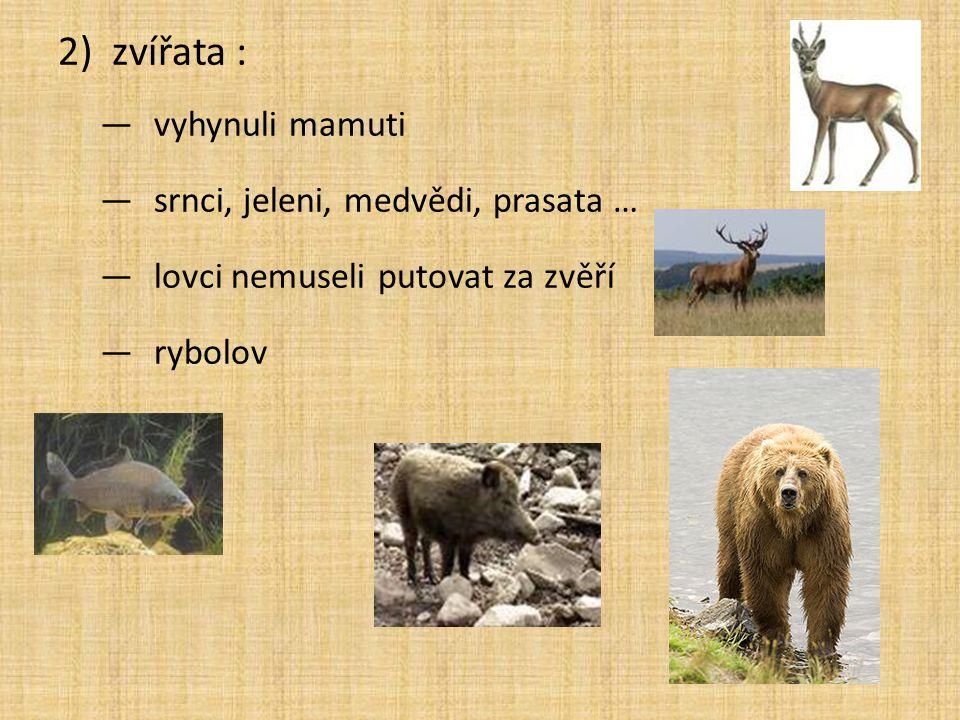 zvířata : vyhynuli mamuti srnci, jeleni, medvědi, prasata …