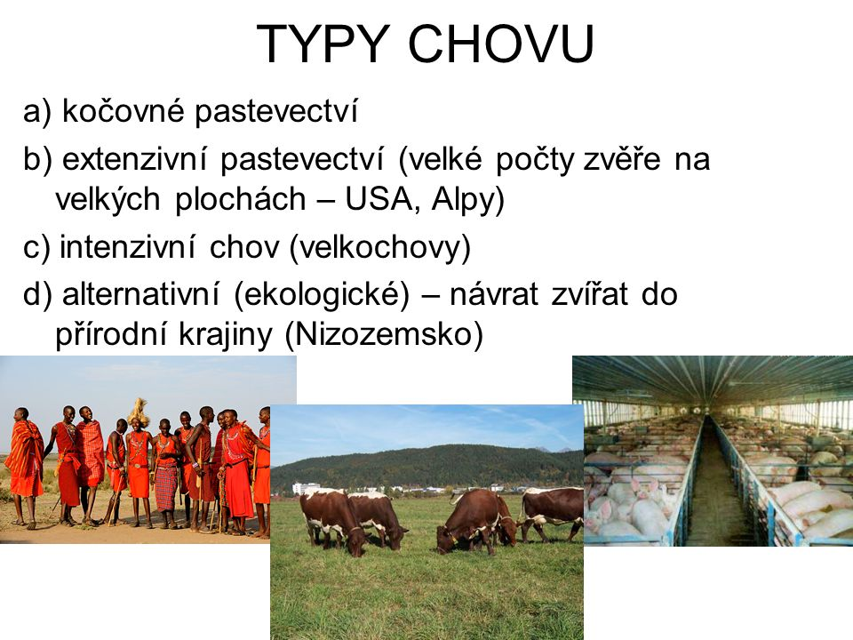 TYPY CHOVU a) kočovné pastevectví