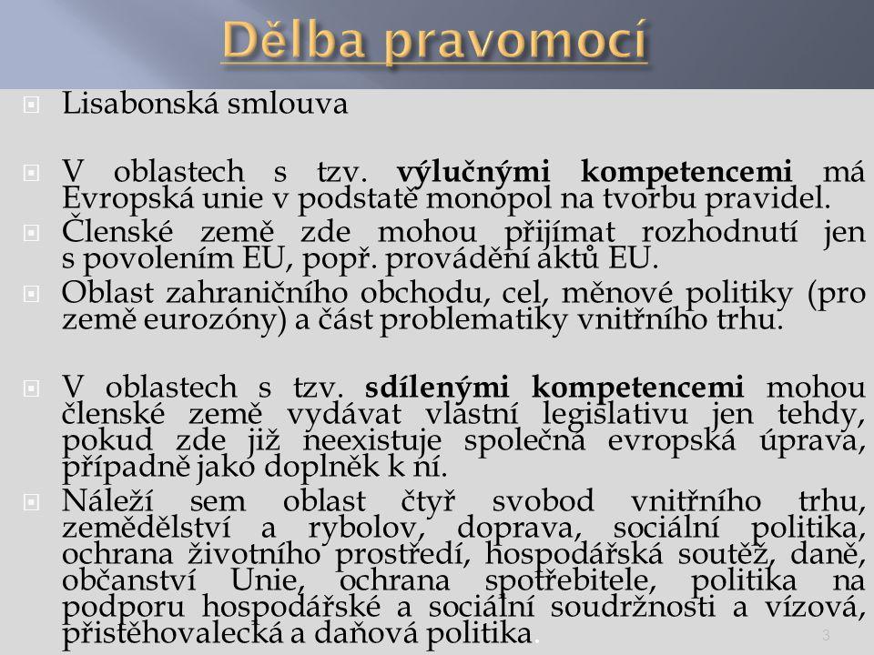 Dělba pravomocí Lisabonská smlouva