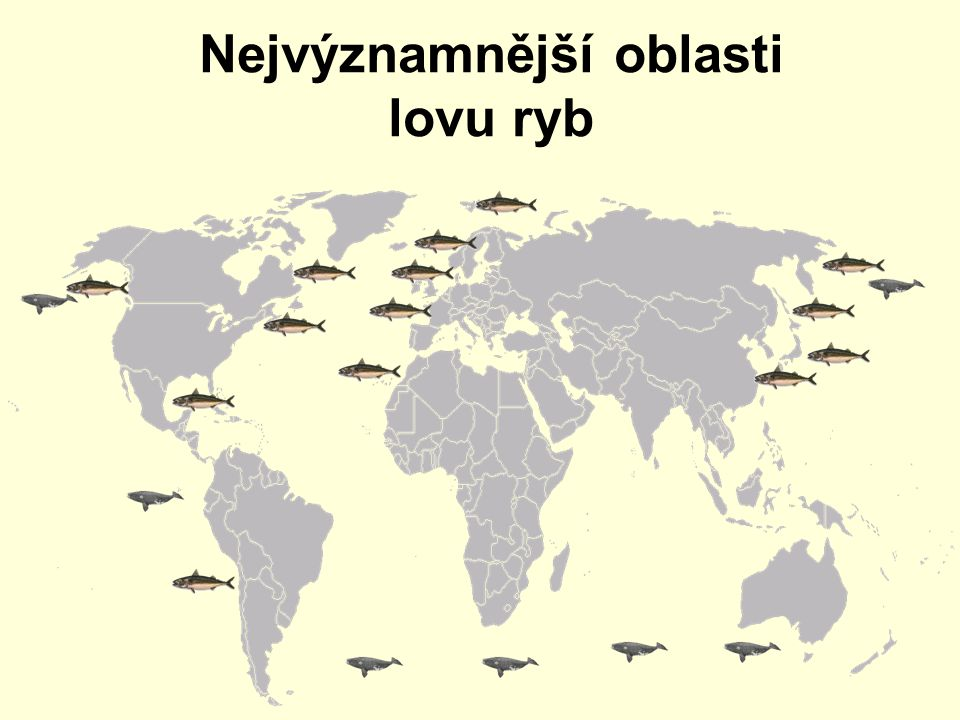 Nejvýznamnější oblasti lovu ryb