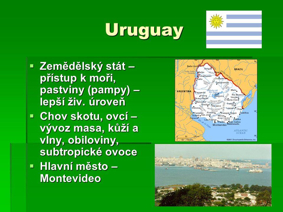 Uruguay Zemědělský stát – přístup k moři, pastviny (pampy) – lepší živ. úroveň.