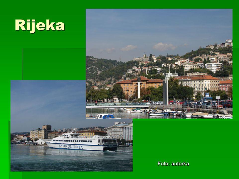 Rijeka Foto: autorka