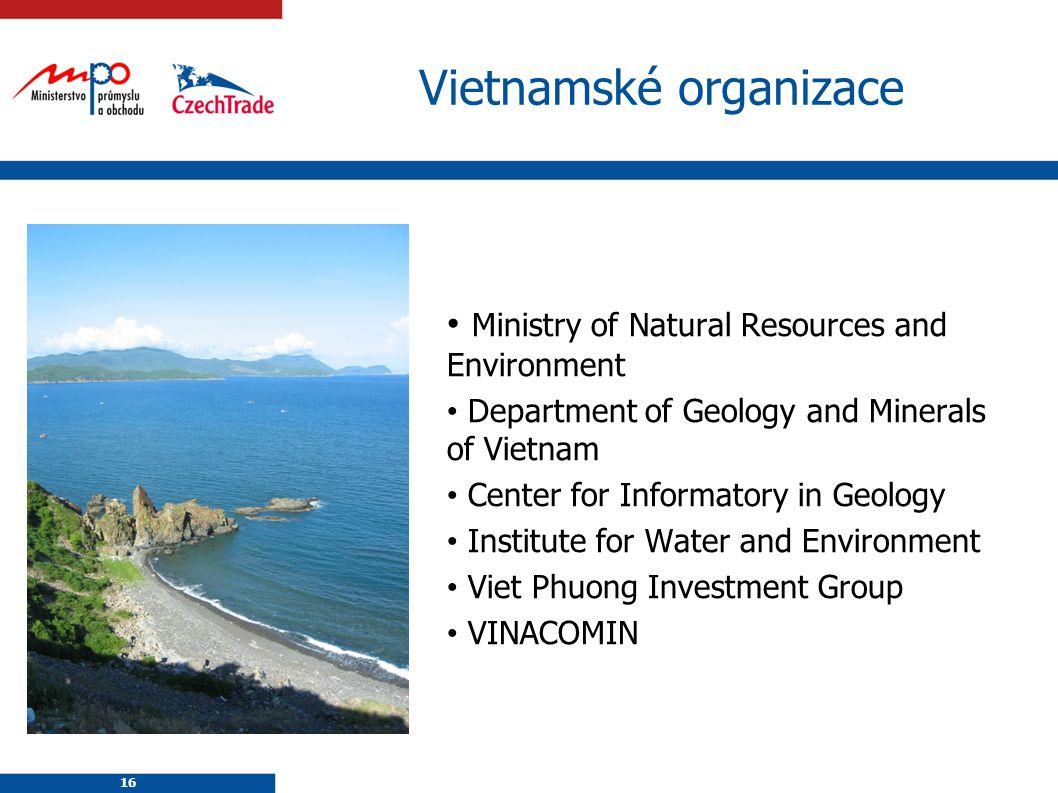 Vietnamské organizace