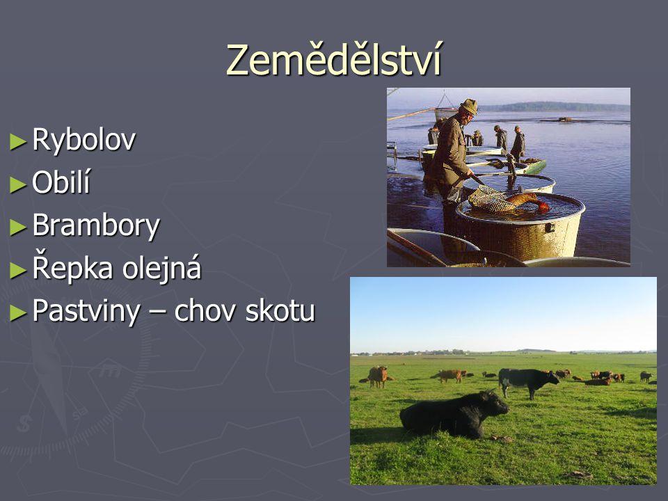 Zemědělství Rybolov Obilí Brambory Řepka olejná Pastviny – chov skotu