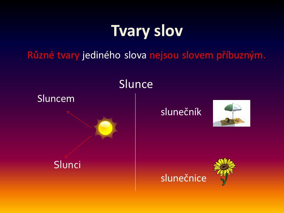 Tvary slov Různé tvary jediného slova nejsou slovem příbuzným. Slunce