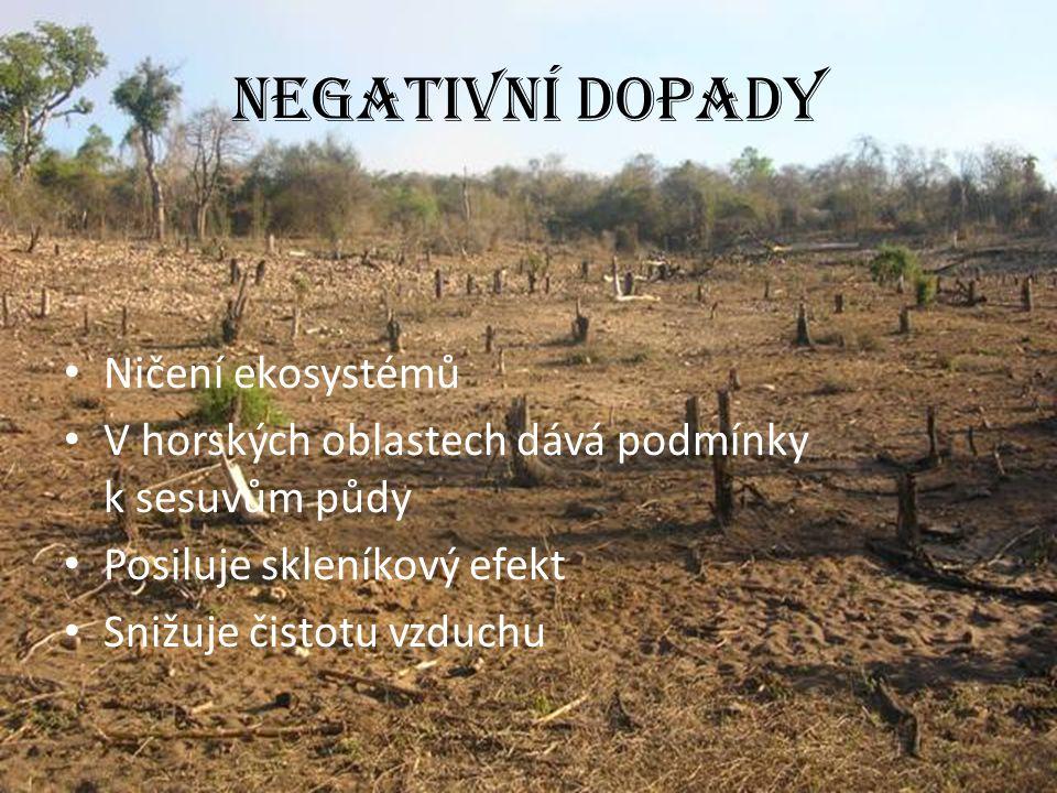 Negativní dopady Ničení ekosystémů