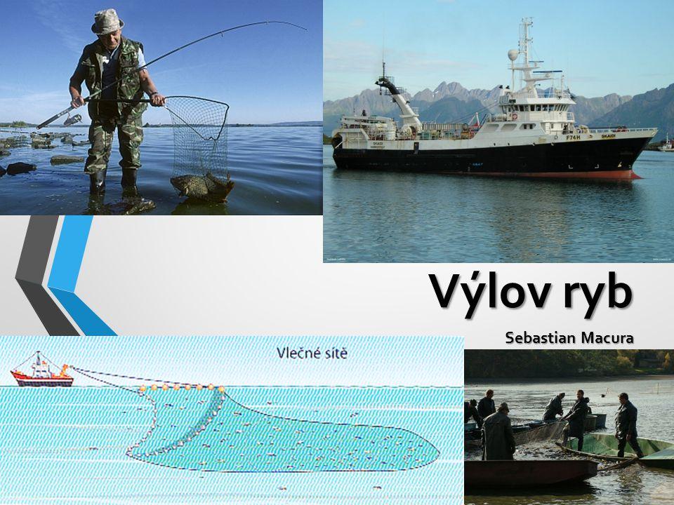Výlov ryb Sebastian Macura