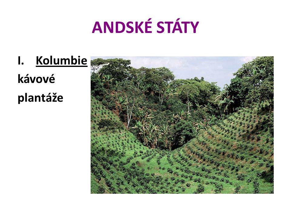 ANDSKÉ STÁTY Kolumbie kávové plantáže