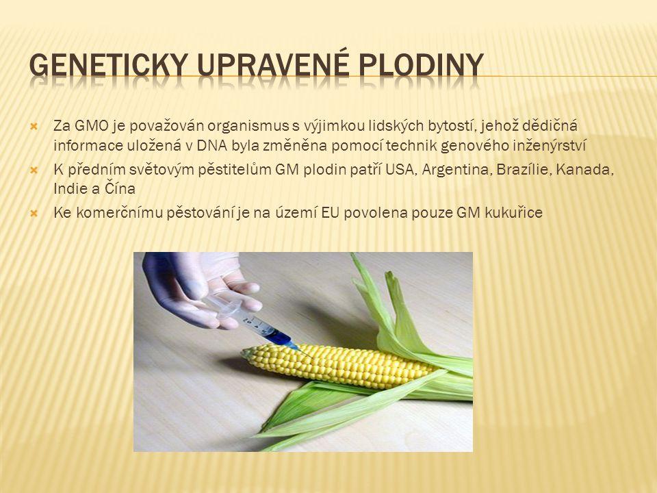 Geneticky upravené plodiny