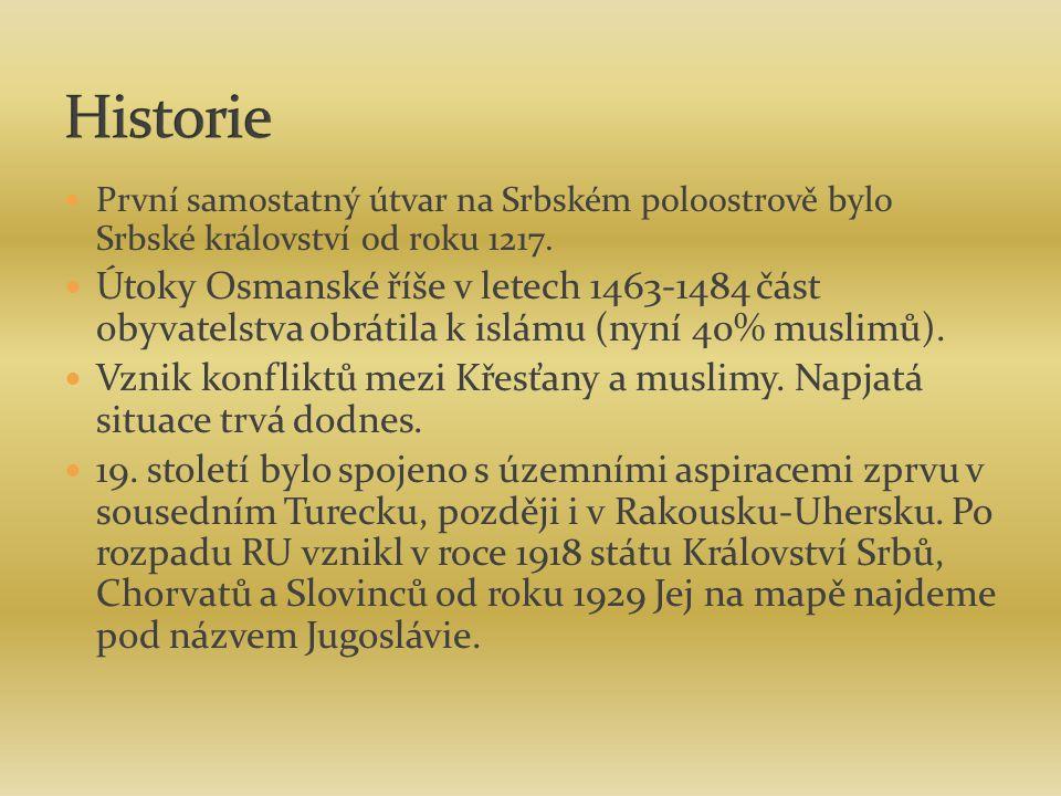 Historie První samostatný útvar na Srbském poloostrově bylo Srbské království od roku 1217.