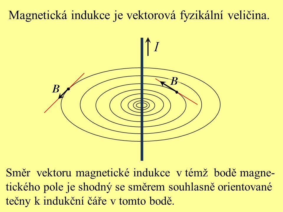 Magnetická indukce je vektorová fyzikální veličina.