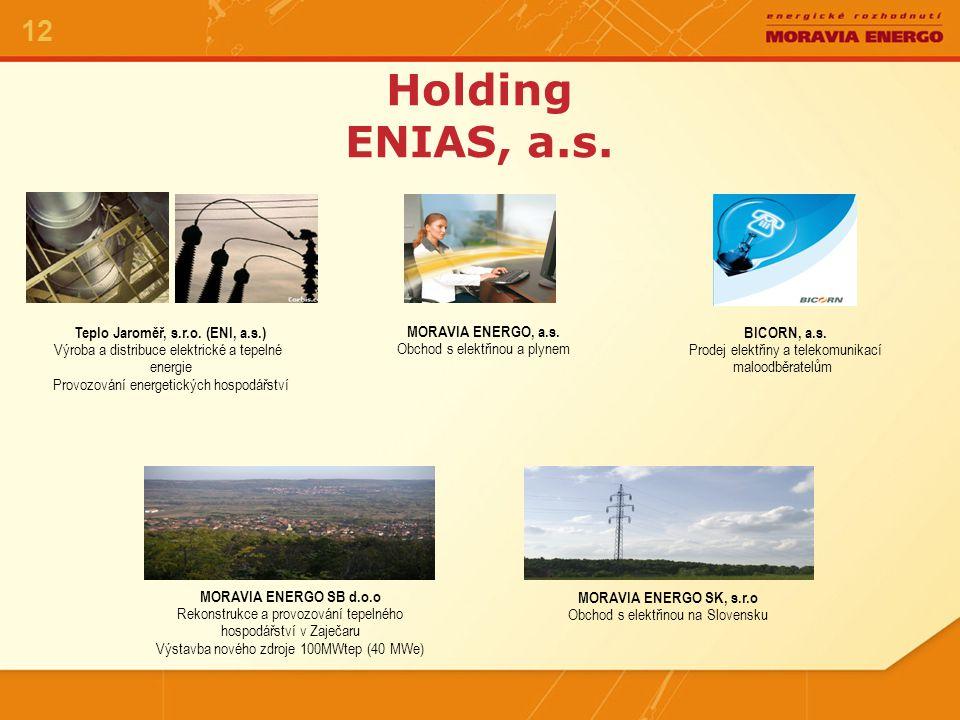 Potenciál energetických společností v holdingu