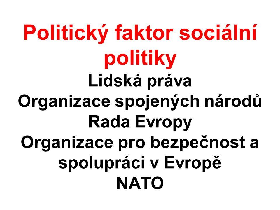 Politický faktor sociální politiky Lidská práva Organizace spojených národů Rada Evropy Organizace pro bezpečnost a spolupráci v Evropě NATO