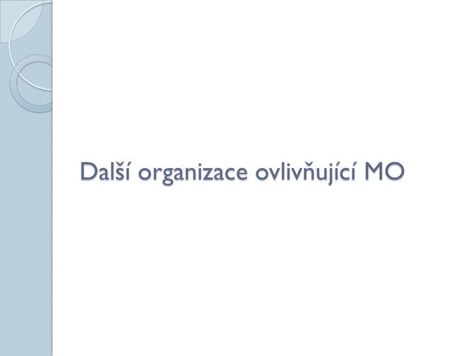 Další organizace ovlivňující MO