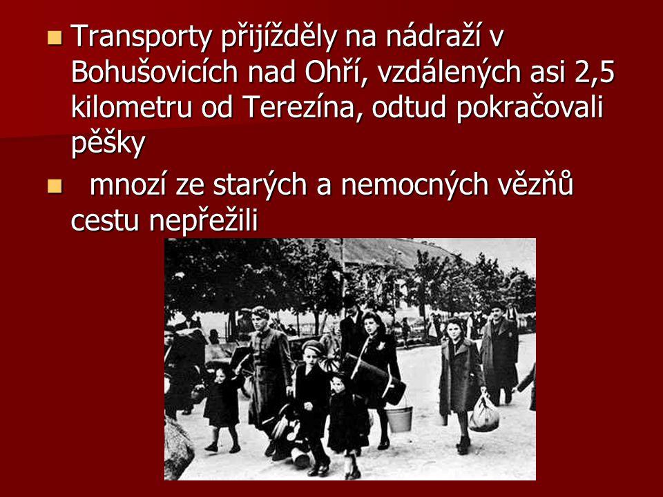 Transporty přijížděly na nádraží v Bohušovicích nad Ohří, vzdálených asi 2,5 kilometru od Terezína, odtud pokračovali pěšky