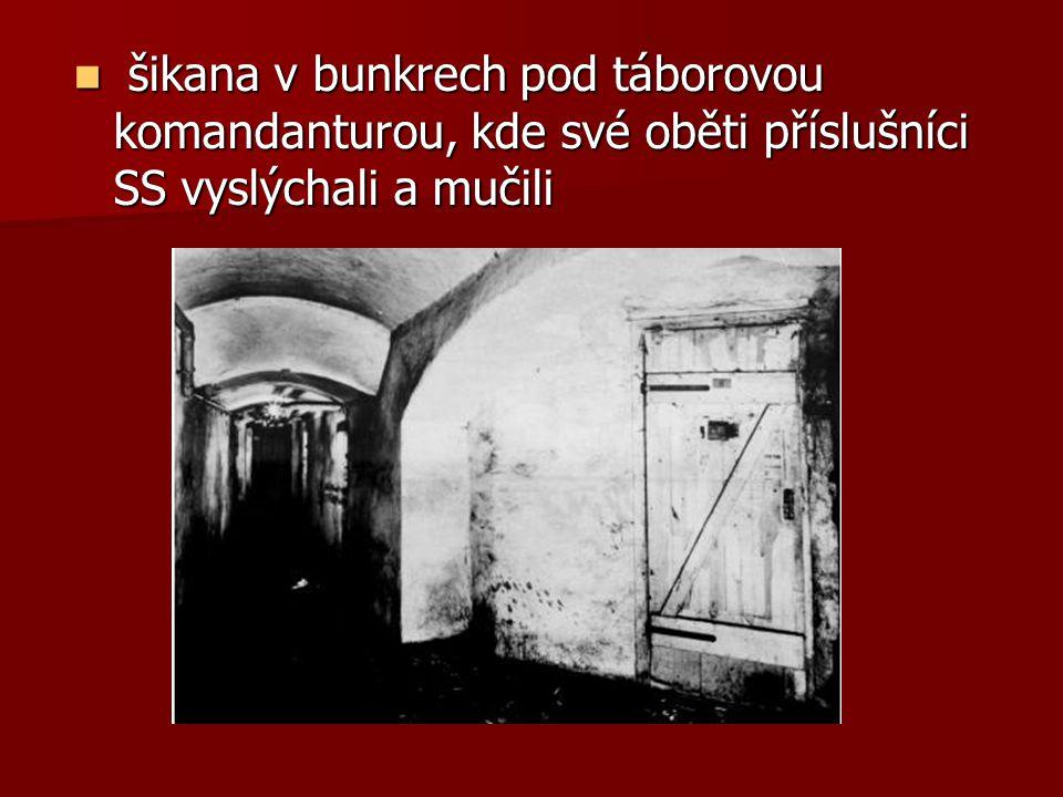 šikana v bunkrech pod táborovou komandanturou, kde své oběti příslušníci SS vyslýchali a mučili