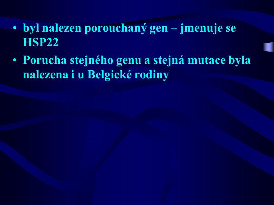 byl nalezen porouchaný gen – jmenuje se HSP22