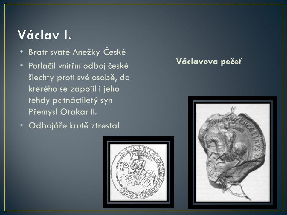 Václav I. Bratr svaté Anežky České