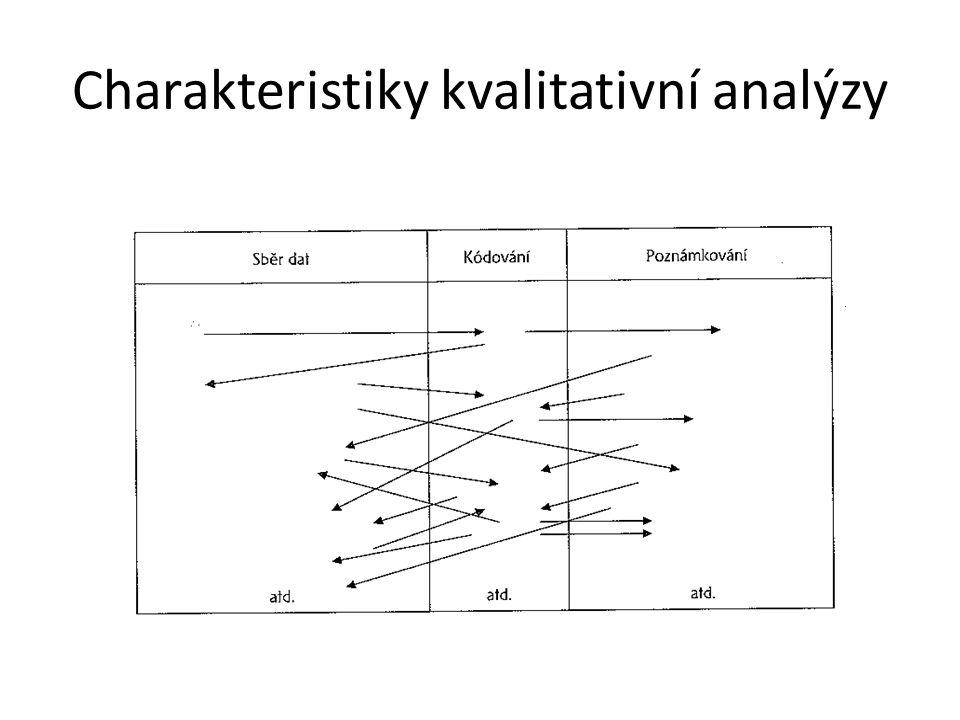 Charakteristiky kvalitativní analýzy