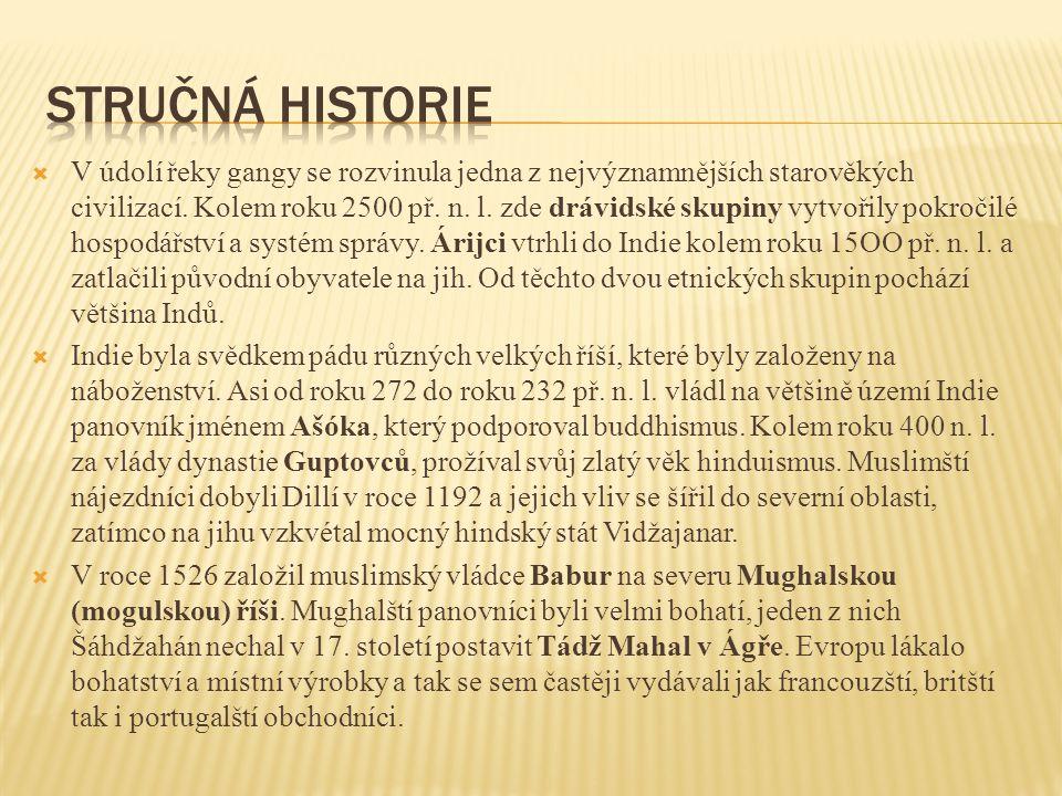 Stručná historie