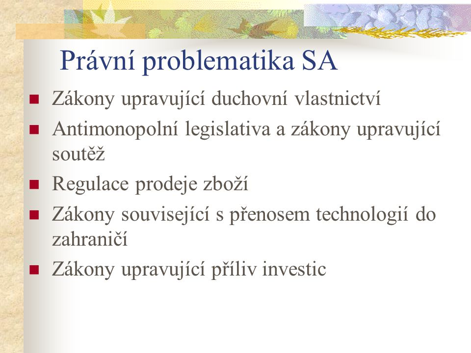 Právní problematika SA