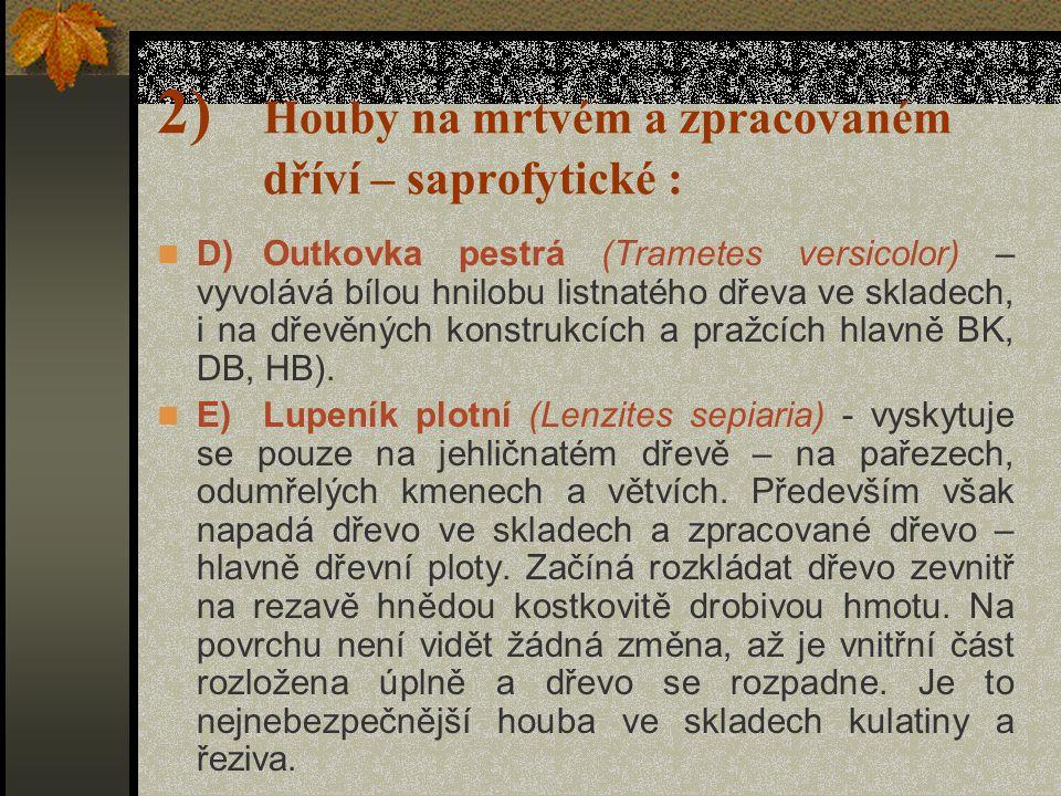 2) Houby na mrtvém a zpracovaném dříví – saprofytické :