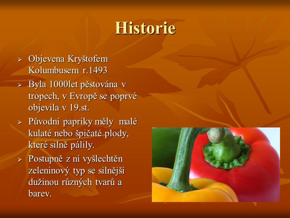 Historie Objevena Kryštofem Kolumbusem r.1493