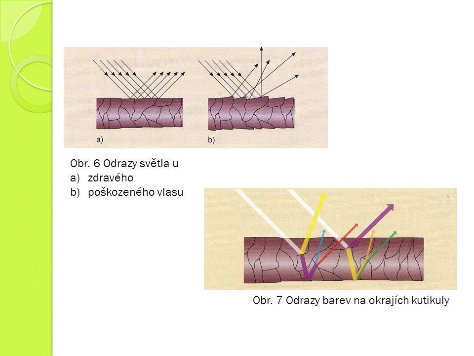 Obr. 6 Odrazy světla u zdravého poškozeného vlasu Obr. 7 Odrazy barev na okrajích kutikuly