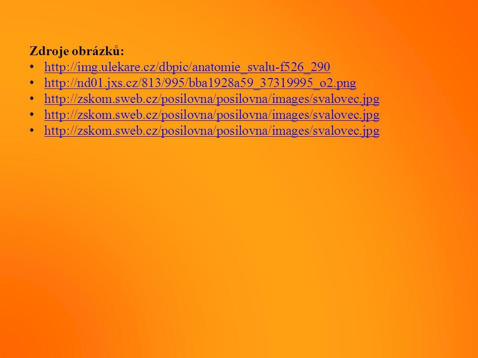Zdroje obrázků: http://img.ulekare.cz/dbpic/anatomie_svalu-f526_290. http://nd01.jxs.cz/813/995/bba1928a59_37319995_o2.png.