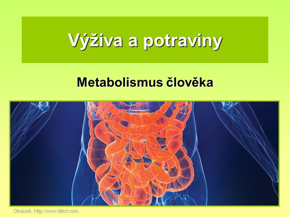 Výživa a potraviny Metabolismus člověka Obrázek: http://www.dtect.com