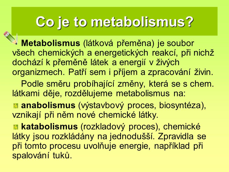 Co je to metabolismus