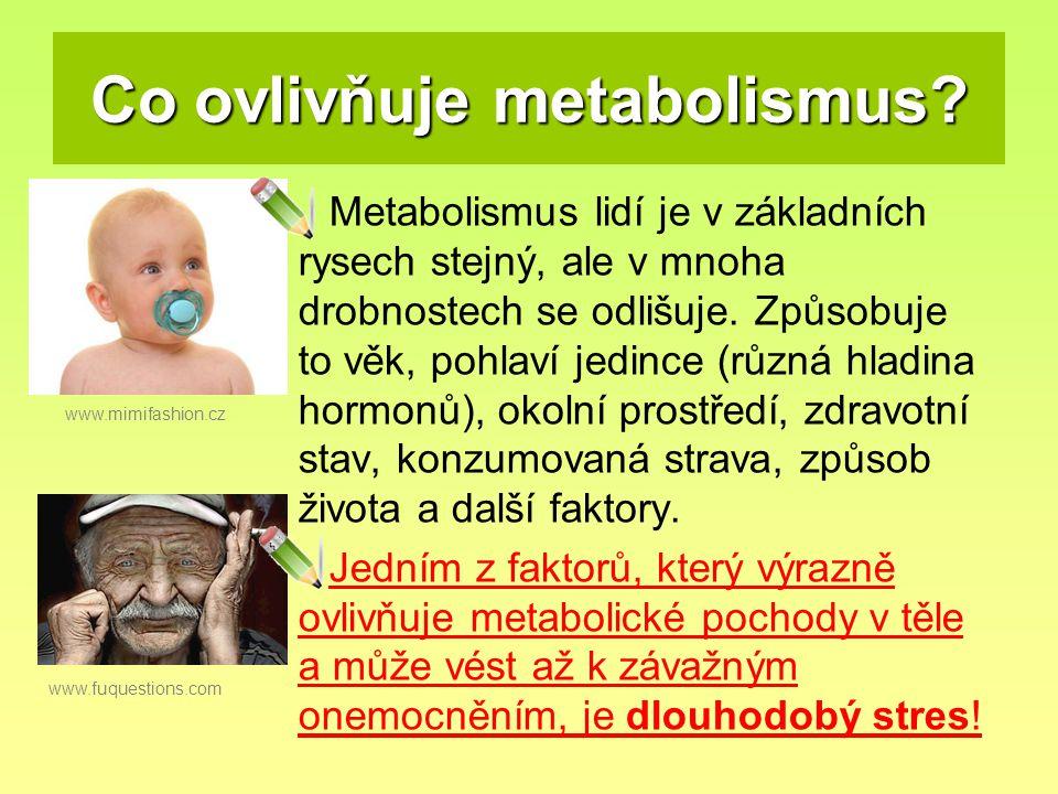 Co ovlivňuje metabolismus