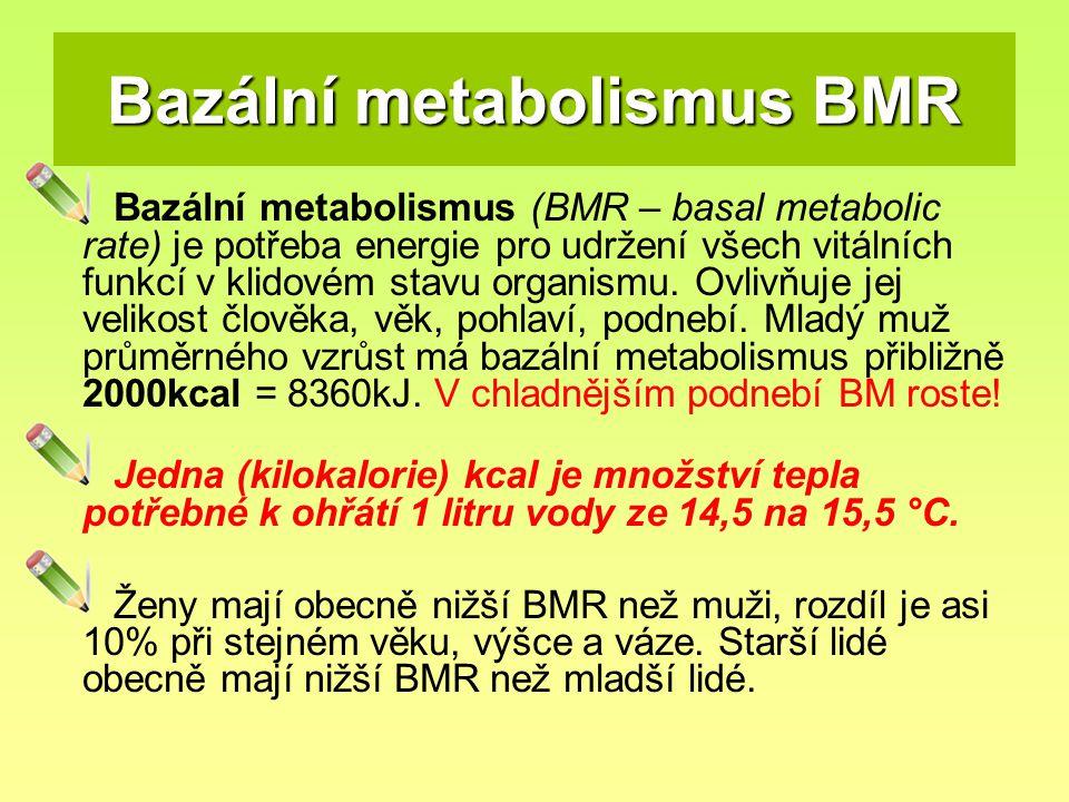 Bazální metabolismus BMR