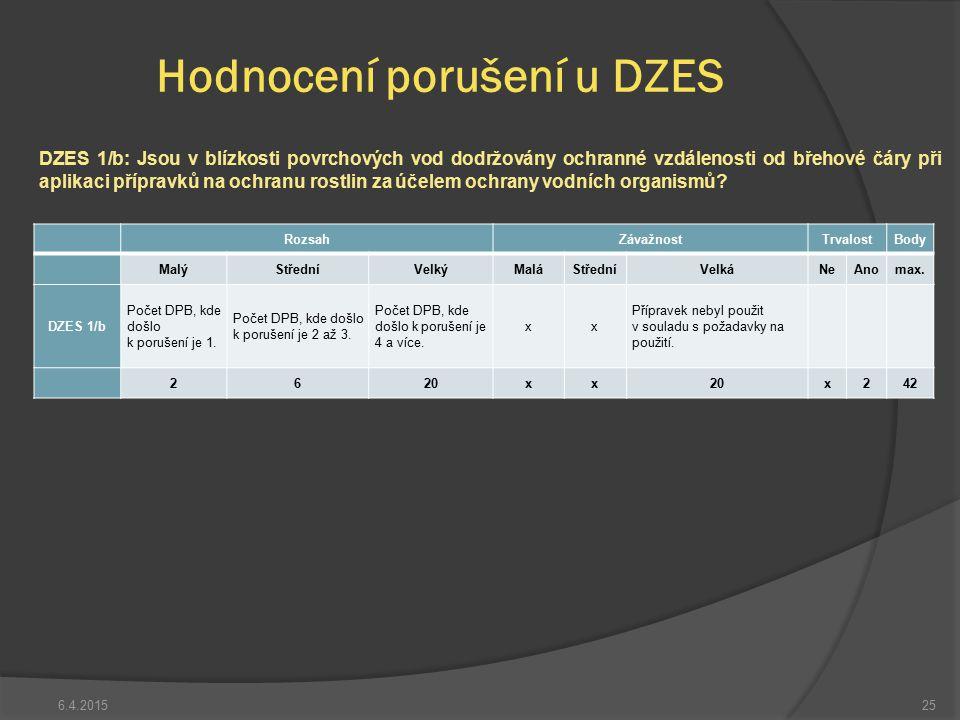 Hodnocení porušení u DZES