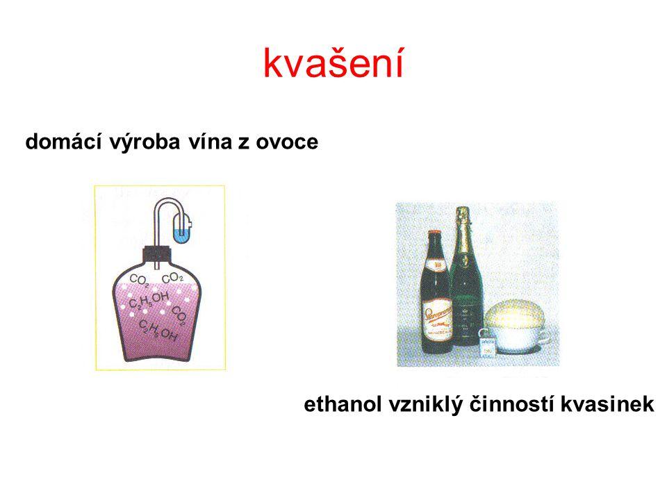 ethanol vzniklý činností kvasinek