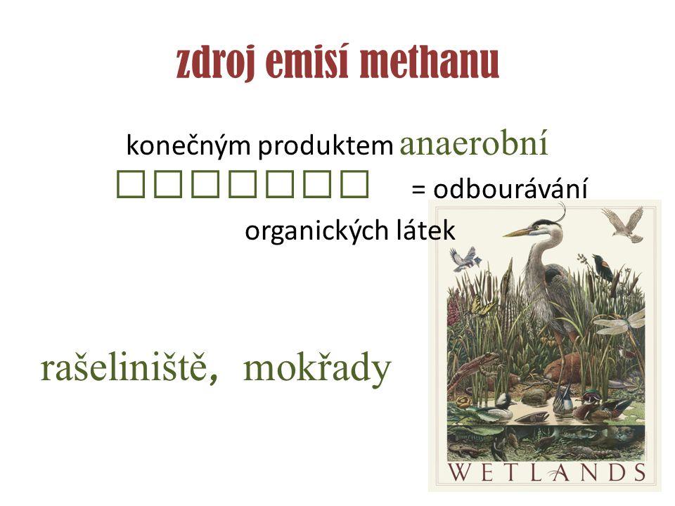 konečným produktem anaerobní redukce = odbourávání organických látek