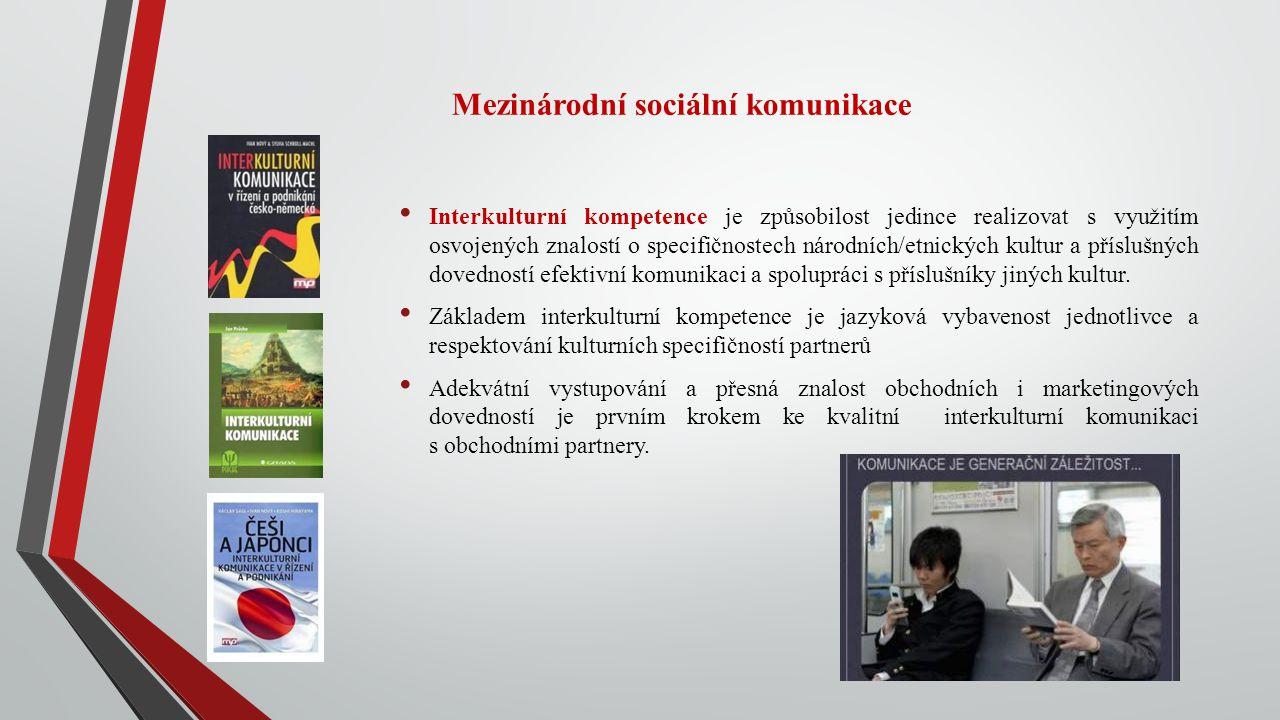 Mezinárodní sociální komunikace