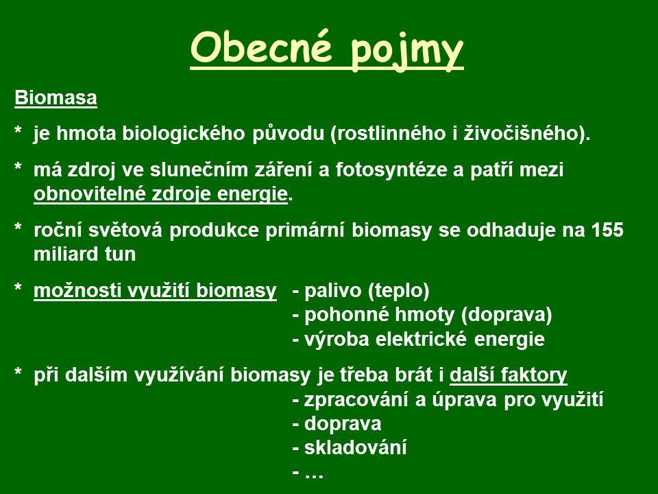 Obecné pojmy Biomasa. * je hmota biologického původu (rostlinného i živočišného).