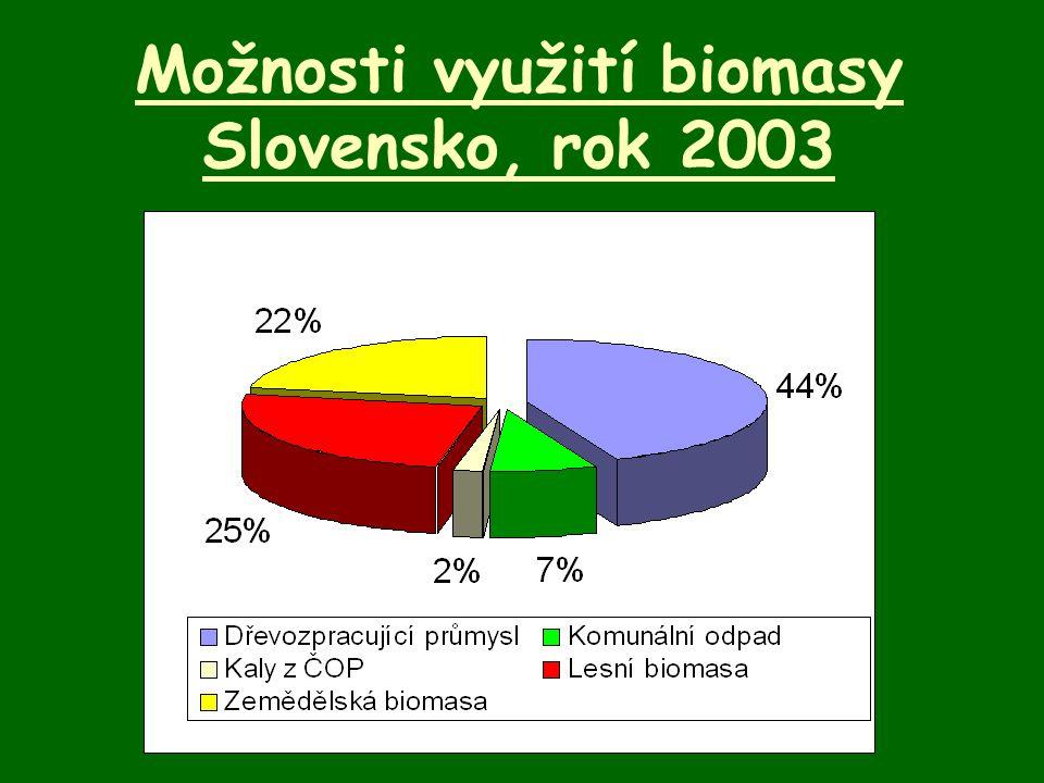 Možnosti využití biomasy Slovensko, rok 2003