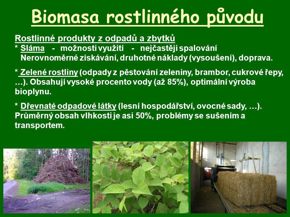 Biomasa rostlinného původu