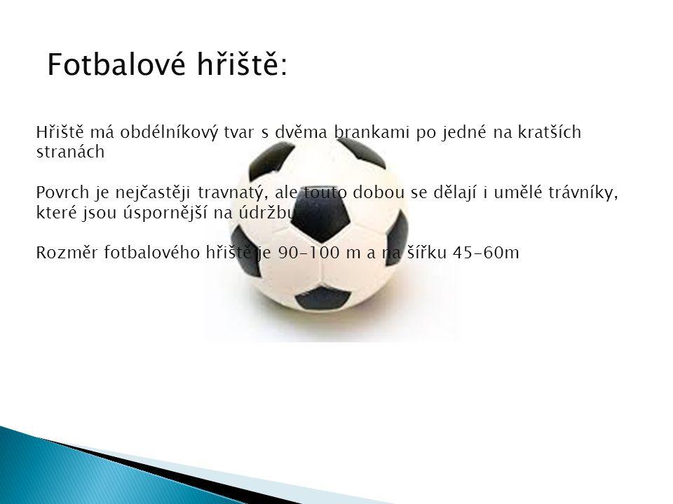 Fotbalové hřiště: Hřiště má obdélníkový tvar s dvěma brankami po jedné na kratších stranách.
