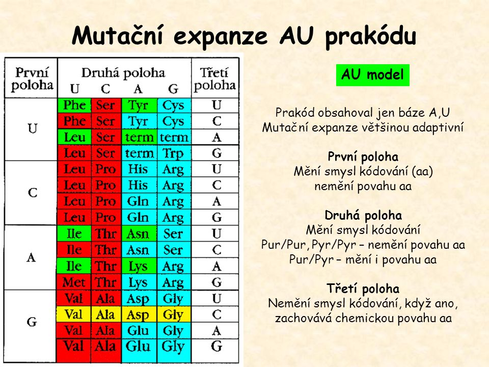 Mutační expanze AU prakódu