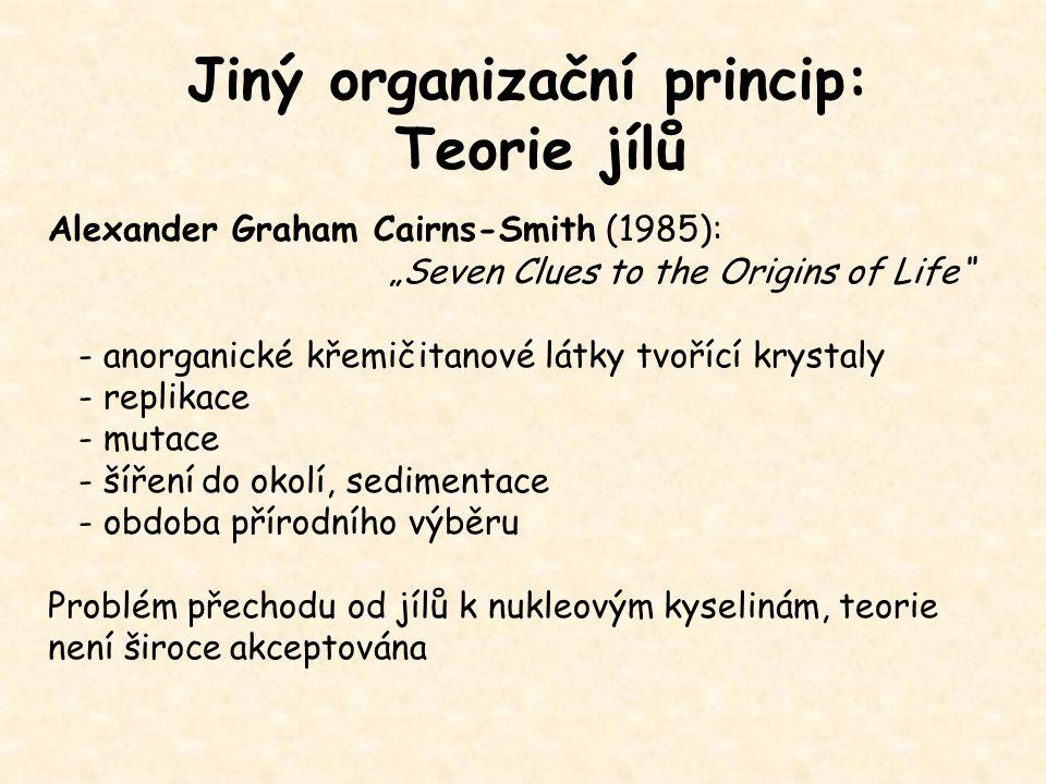 Jiný organizační princip: