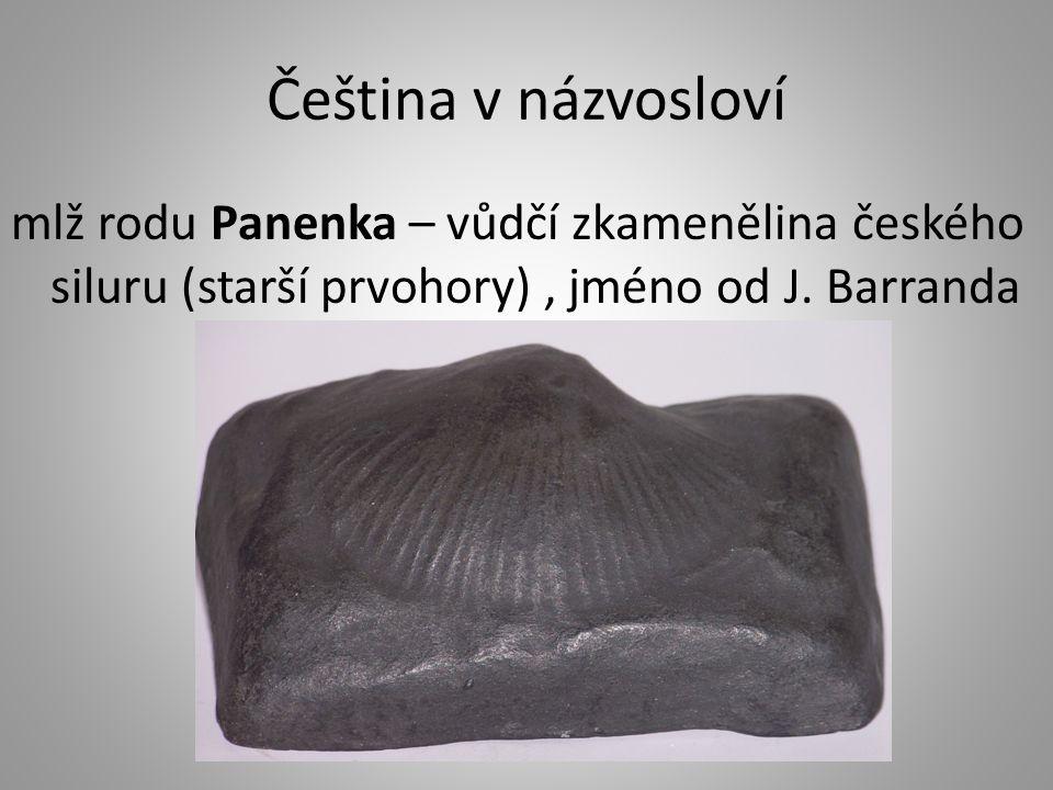 Čeština v názvosloví mlž rodu Panenka – vůdčí zkamenělina českého siluru (starší prvohory) , jméno od J.