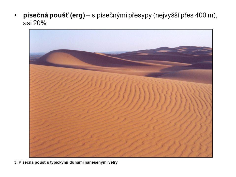 písečná poušť (erg) – s písečnými přesypy (nejvyšší přes 400 m), asi 20%