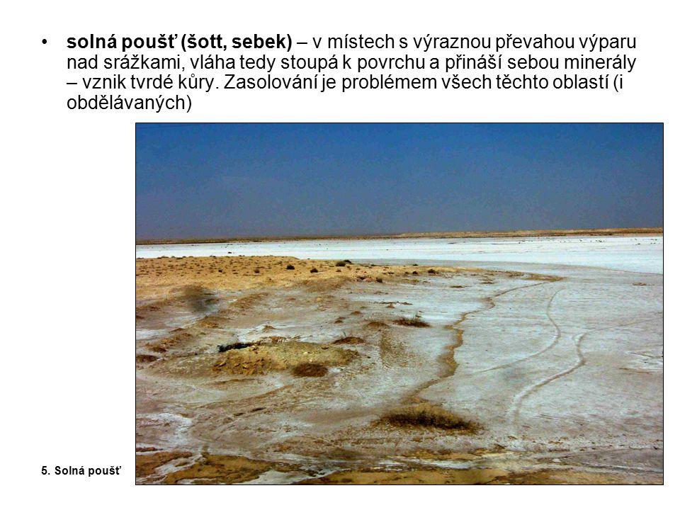 solná poušť (šott, sebek) – v místech s výraznou převahou výparu nad srážkami, vláha tedy stoupá k povrchu a přináší sebou minerály – vznik tvrdé kůry. Zasolování je problémem všech těchto oblastí (i obdělávaných)