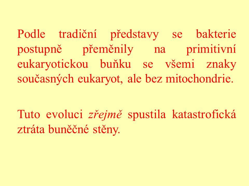 Podle tradiční představy se bakterie postupně přeměnily na primitivní eukaryotickou buňku se všemi znaky současných eukaryot, ale bez mitochondrie.