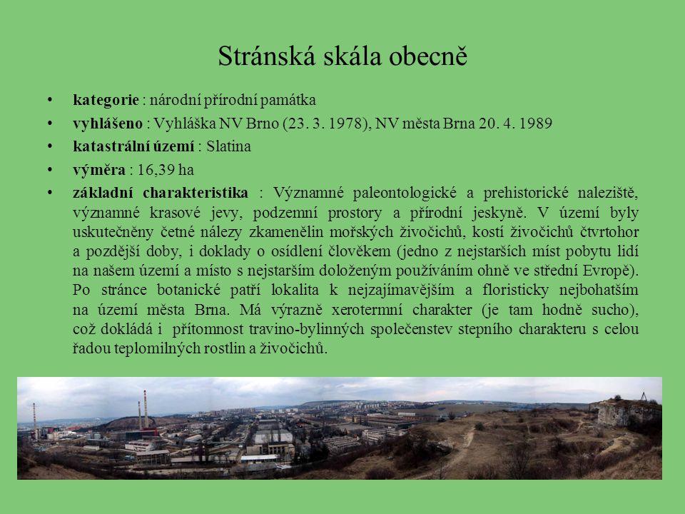 Stránská skála obecně kategorie : národní přírodní památka