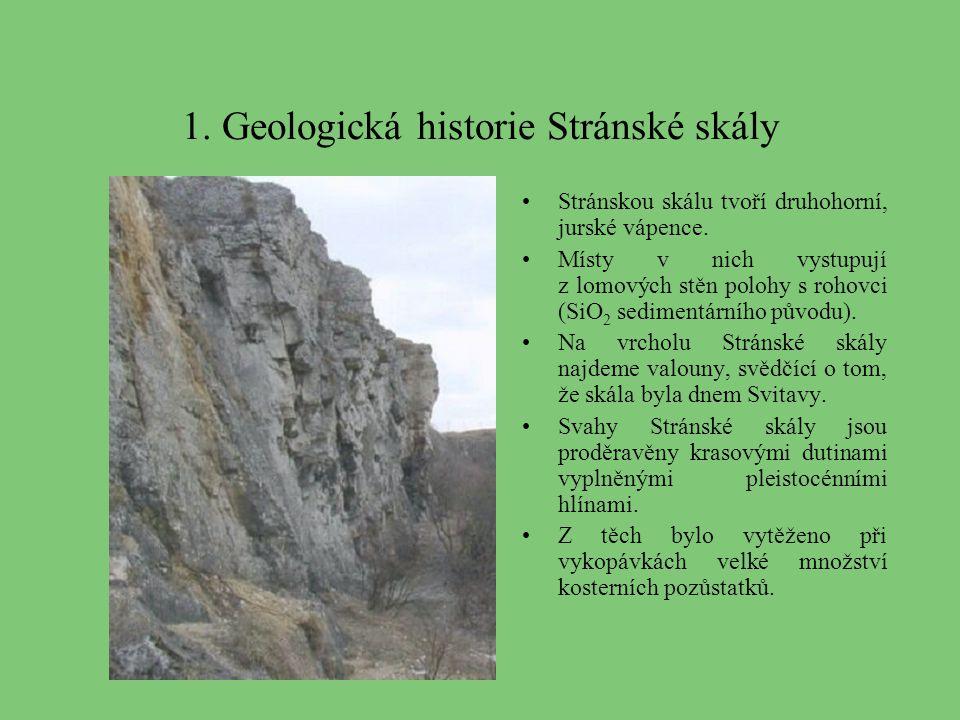 1. Geologická historie Stránské skály
