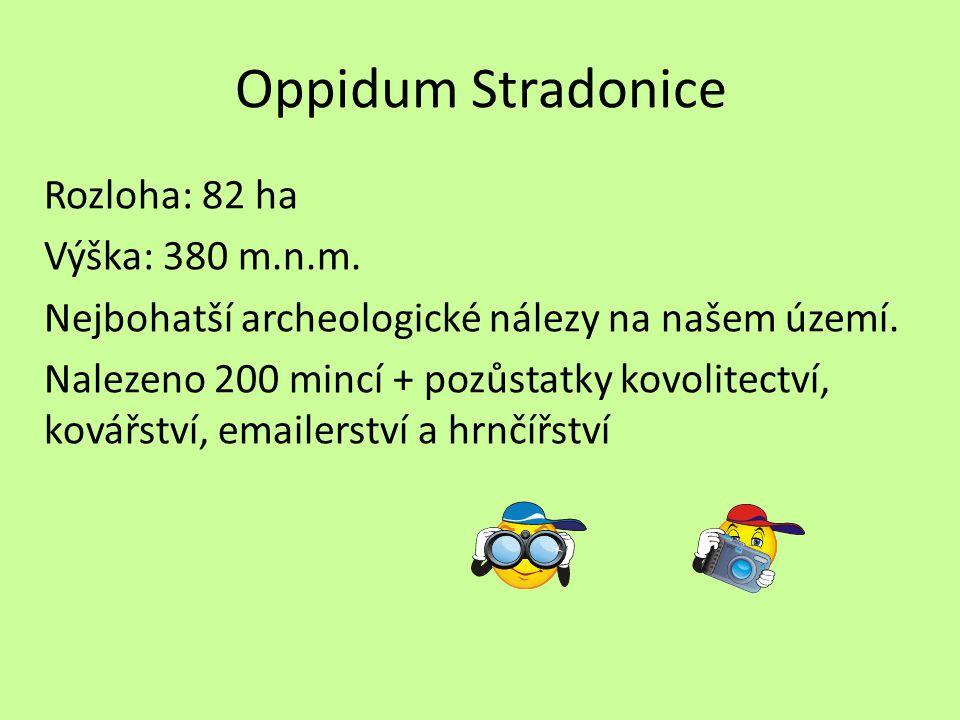 Oppidum Stradonice